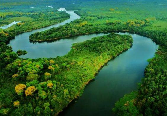 55. Mato Grosso (Brasil) Mato Grosso o Mato Grueso es uno de los 26 estados que junto con el distrito federal forman la República Federativa del Brasil. Está localizado al norte de la región Centro-Oeste. Tiene como límites: Amazonas, y Pará por el norte; Tocantins por el este; Mato Grosso del Sur por el sur; Rondonia y... Ver mas
