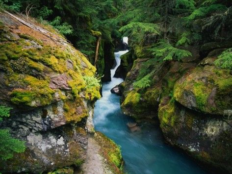 Avalanche Creek Photographic Print by James Randklev at AllPosters.com