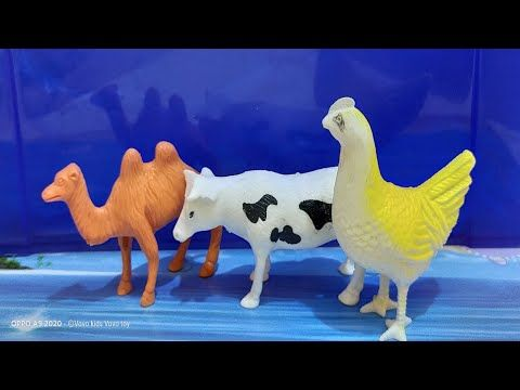 Animals For Kids To Learn English Learn Animals Names Farm Wild Animals For Kids عالم الحيوان Playmobil Kids Toys ج Animals For Kids Animals Baby Animals
