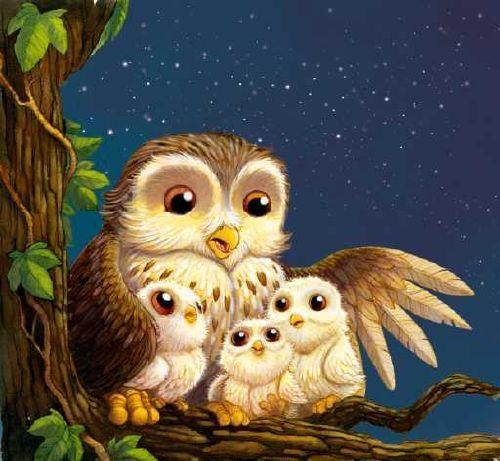 owly family::