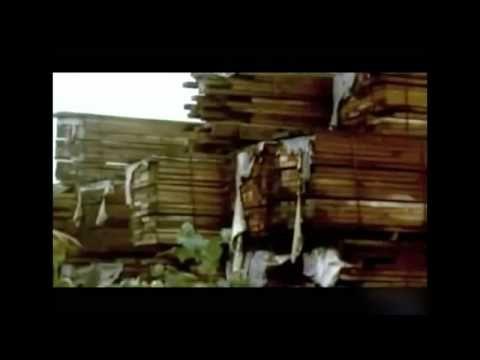 """Los disparates de los cubanos en """"Mira Documentales"""" - 11 de octubre de ..."""