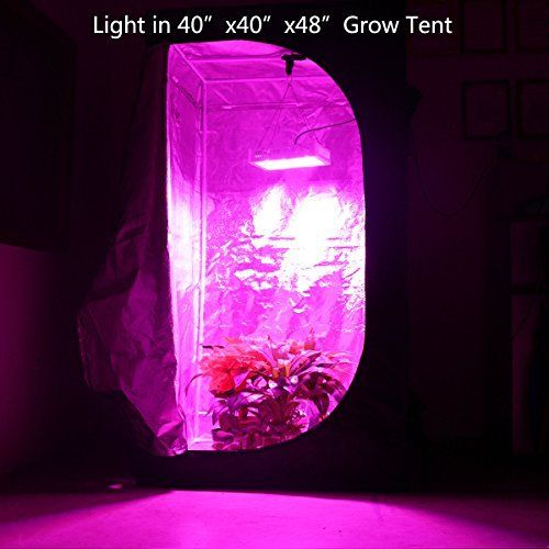 Higrow 1000w Double Chips Led Grow Light Full Spectrum Grow Lamp With Rope Hanger For Indoor Greenhouse Hydroponic P Led Grow Lights Grow Lights Plant Lighting