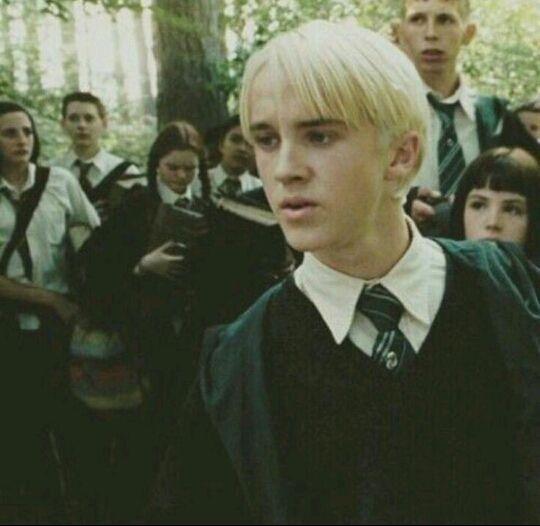 Drarry Draco Tom Felton Draco Malfoy Draco Malfoy Harry Potter Draco Malfoy