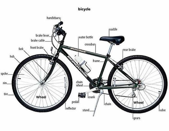 learning parts of a bicycle:
