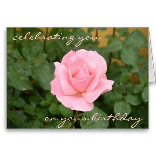 beautiful birthday cards | Beautiful Pink Rose Birthday Card