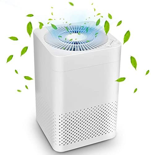 Enjoy Exclusive For Air Purifier True Hepa Air Purifiers Home Auto Mode Sleep Mode Reduce Pet Dander Household Odor Smoke Dust 3 In 1 Air Filter Up In 2020