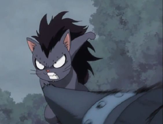 fairy tail gajeel related - photo #4