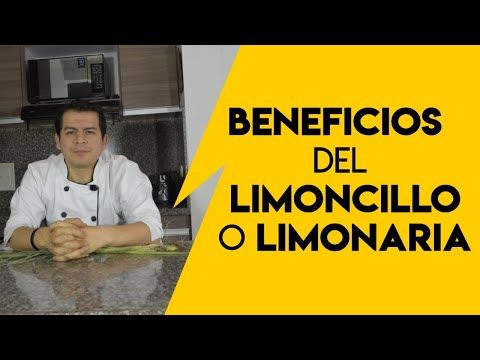 Beneficios Del Limoncillo O Limonaria Dr Javier E Moreno Youtube Limonaria Beneficios Del Limón Limoncillo