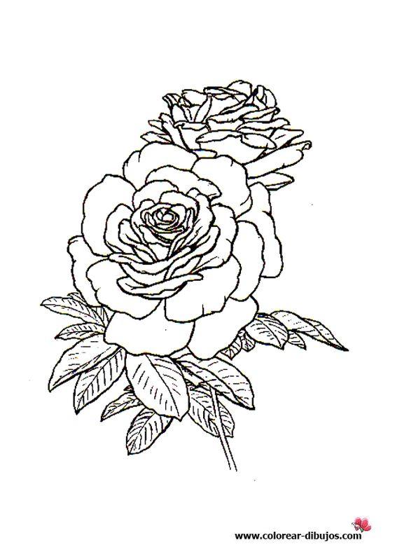dibujos de rosas para colorear en colorear-dibujos.com