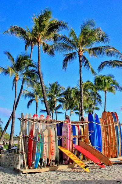 """""""Surf 'n Palms"""" holt das Sommer-Feeling nach Hause! Beim Betrachten der bunten Surfbretter unter Palmen und blauem Himmel verspürst Du gleich sportliches Urlaubs-Flair, Strandleben, Palmen und sommerliche Gefühle!"""