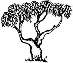 Image Result For Mango Tree Clip Art