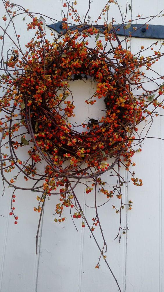 Fall Bittersweet Wreath | Etsy