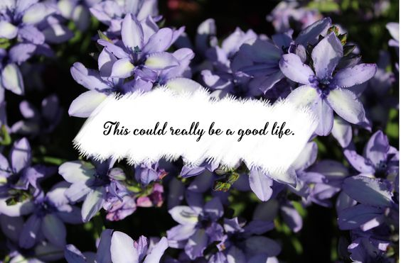Good Life - One Republic Lettering - nature