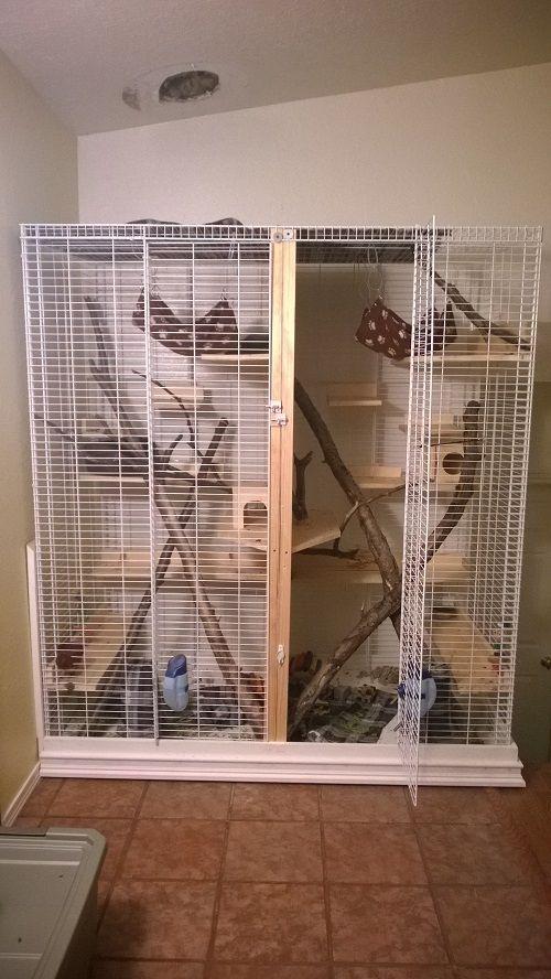 Cost To Build Chinchilla Cage