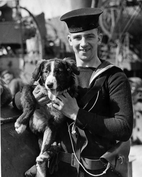 1st May 1941: 'Hoy' the dog mascot of a minesweeper HMS Bangor is being held by a member of the crew. (Photo by Arthur Tanner/Fox Photos/Getty Images)