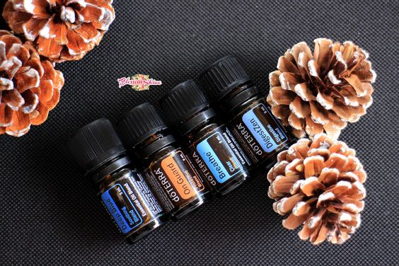doTERRA Top 4 Blend Oils Must have