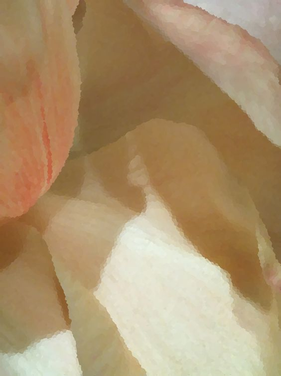Soft and Pale - Peonies  http://society6.com/IAMMOF/Soft-and-Pale_Print