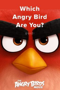 Which Angry Bird are you? Take this quiz and find out today!