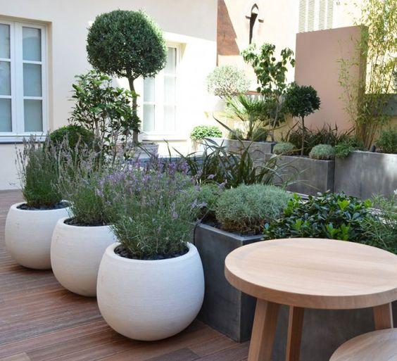 Pots et plantes le bon accord planters plantes et forme for Maison container gard