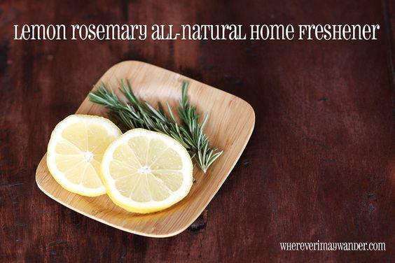 Scents of the Season: Lemon & Rosemary simmer pot