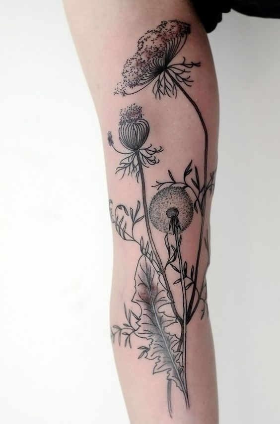 45 Dandelion Tattoo Designs for Women | Queen anne, Lace ...