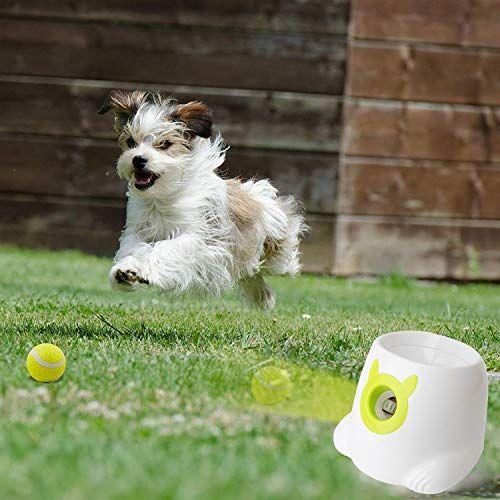 Livebest Mini Automatic Ball Launcher Tennis Ball Automatic Ball Launcher Ball Launcher Tennis Ball