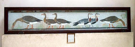 Ocas de meidum fueron encontradas en la mastaba de for Mural egipcio