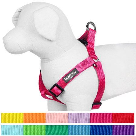 Pets Dog Harness Dog Collars Leashes Pet Steps