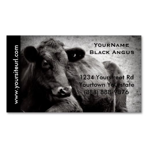 Black angus cattle photo for beef ranch or farm double sided black angus cattle photo for beef ranch or farm double sided standard business cards colourmoves