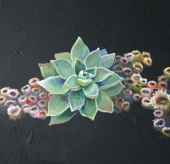succulents and coral painting