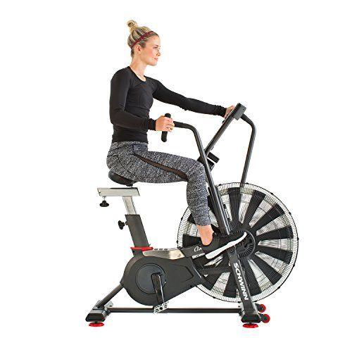 Schwinn Ad7 Airdyne Bike Bike Best Exercise Bike Workout