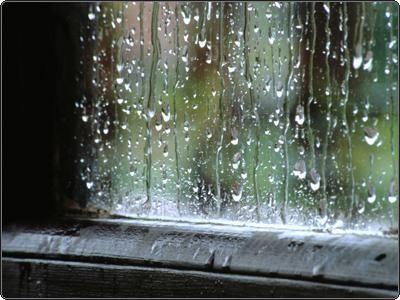 """""""Uma pancadinha na vidraça, como se algo a tivesse atingido, seguida de uma grande queda, leve como grãos de areia deixados a cair do alto de uma janela, por cima, e depois a queda se estendendo, regulando-se, adquirindo um ritmo, tornando-se fluida, sonora, musical, inumerável, universal: era a chuva.""""  (Marcel Proust)"""