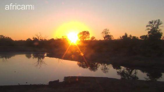 Idube dawn March 4 16