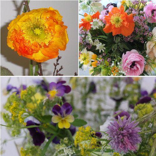 Florales - mindi.yana