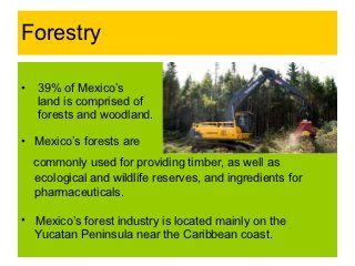 Mexico's natural resources