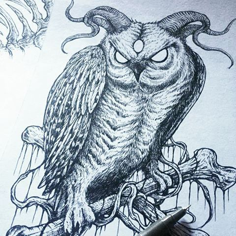 480x480 Evil Owl Drawing Owls Drawing Drawings Owl Drawing Images
