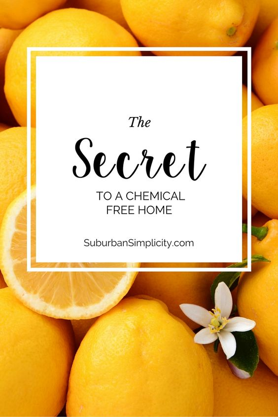 Come learn how to sanitize, deodorize, clean, freshen and detoxify your home without any harsh chemicals!  Clean naturally for a happy, healthy home.