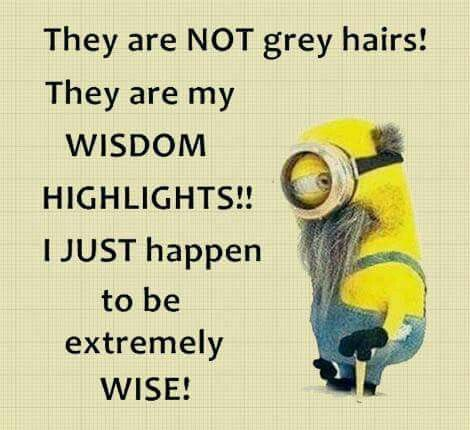 Minions Humor Quotes