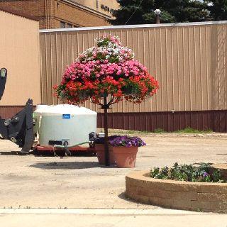 Metal flower pot tree! | Garden Spaces | Pinterest | Trees, Metal flowers and Pots