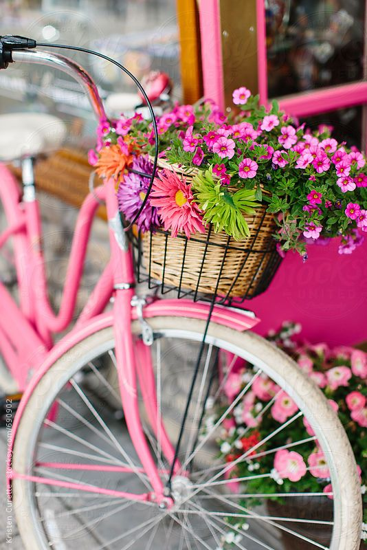 Pink cruiser bike with a basket of flowers.