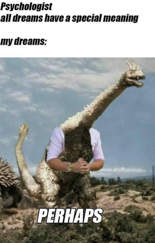 Afternoon Randomness 40 Pics Silly Jokes Funny Puns Jokes Dark Humour Memes