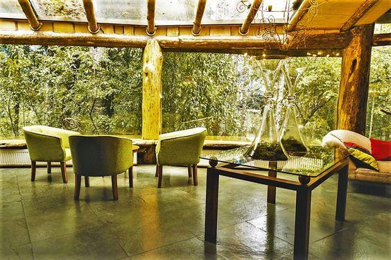 Lobby, Magic Mountain Hotel, Huilo Huilo Reserve, Chile