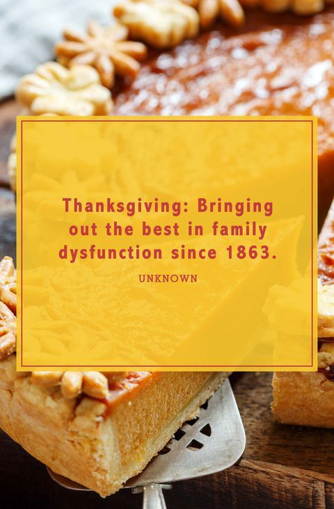 Funny Thanksgiving Quotes To Get All Your Guests Laughing Thanksgiving Quotes Funny Thanksgiving Quotes Best Family Quotes