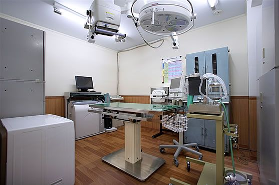 こちらは動物病院のレントゲン 手術室 壁にはx線対策がされています リフォーム 病院 リフォーム 事例
