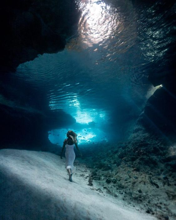 Fotografía subacuática - Página 3 802b50f02d9f1c36b0c35b5ef04751ed