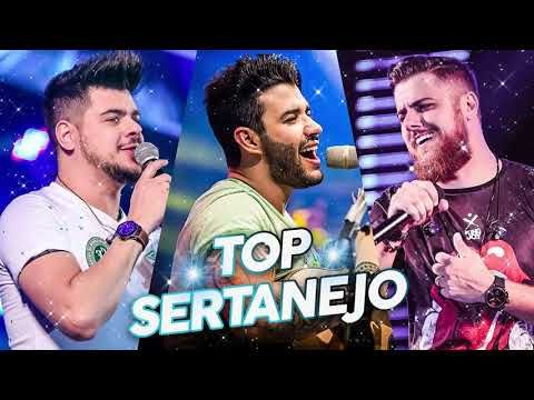 Top 30 Sertanejo 2019 As Melhroes Do Sertanejo Universitario
