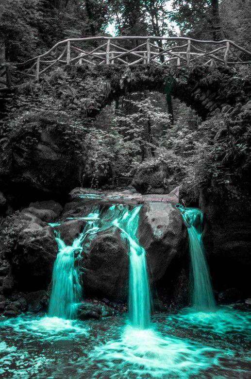 Black White With A Touch Of Color Photography Colorsplash Color Color Splash Pinterest