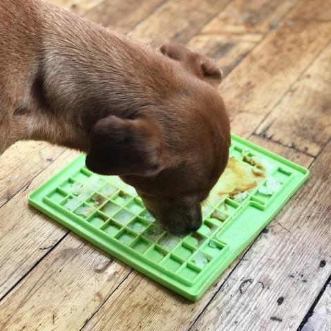 Lickimats Five Easy Topping Ideas Dog Enrichment Diy Dog Stuff