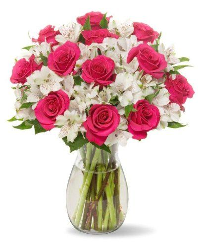22 Long Stem Alstro-Rose Bouquet - With Vase Benchmark Bouquets http://www.amazon.com/dp/B00E3IXY62/ref=cm_sw_r_pi_dp_4UHiub1K2JSB4: