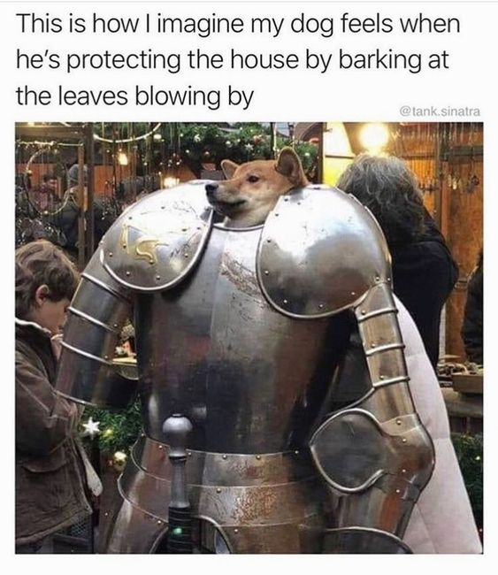 You Deploy The Annoying Dog